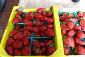 flat-of-strawberries